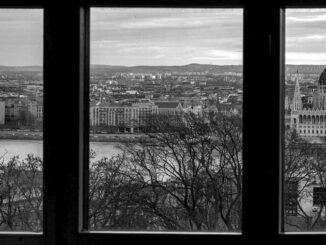 Gál Norbert: Ablak